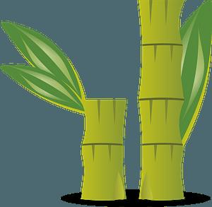 Bambooのクリップアート