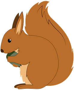 Squirrel 클립 아트