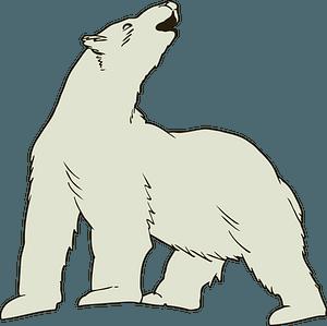 Howling polar bear clipart