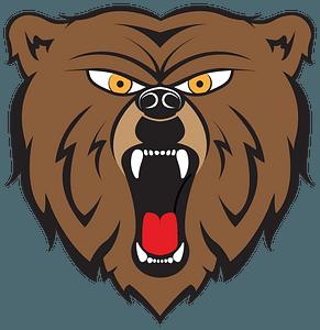 Angry bear face 클립 아트