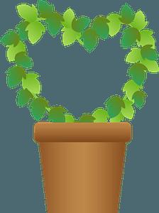 Heart ivy clipart