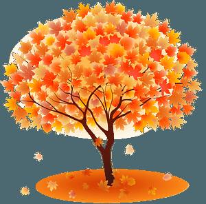 Maple tree autumn leaves clipart