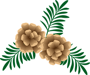 Pine Cone and Pine Needles clipart