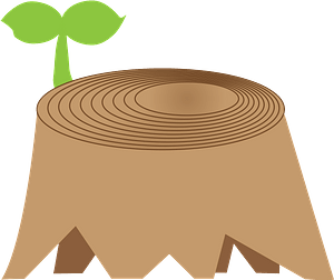Plant is sprouting out of a tree stump clipart