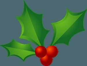 Christmas holly clipart