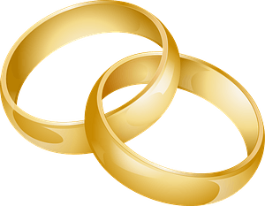Wedding bands intertwined clipart