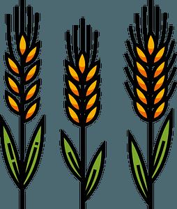 Wheatのクリップアート