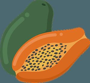 Papayas clipart
