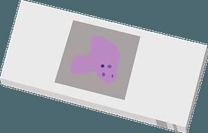 Microscope slide cover slip clipart