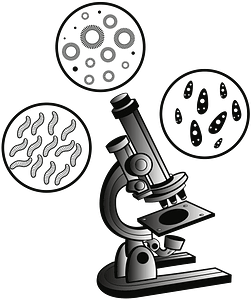 Microscope and virus clipart