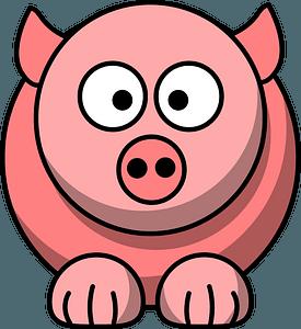 Big-eyed pig clipart