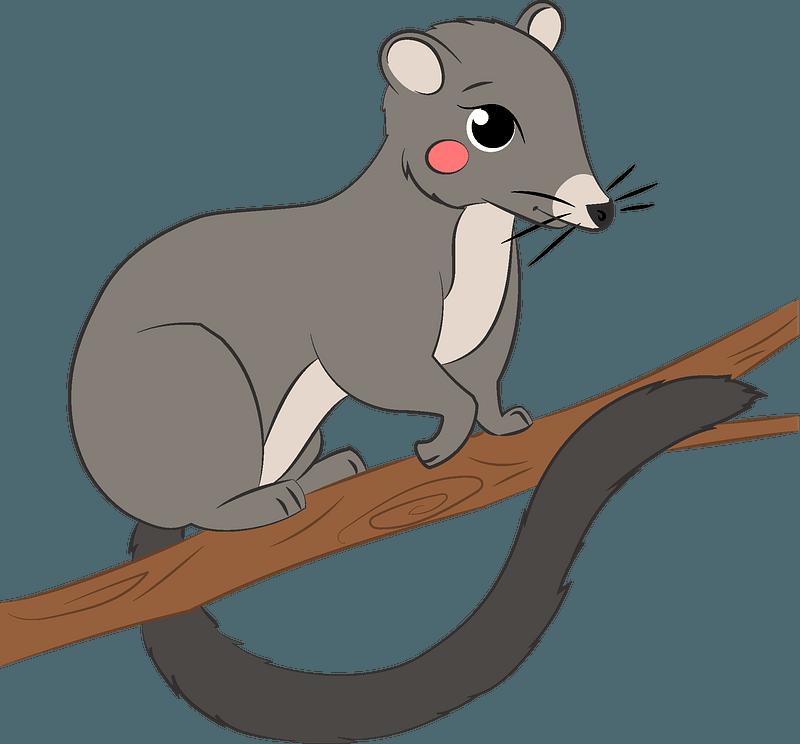 clipart possum - Clip Art Library