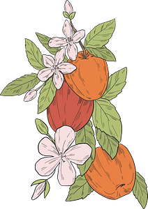 Apples on a branch clipart