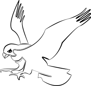 Hawk in flight clipart