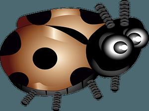 Brown ladybug clipart