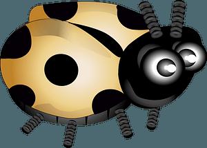 Yellow ladybug clipart