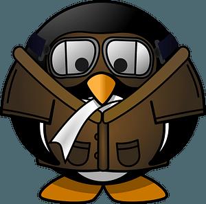 Pilot penguin clipart