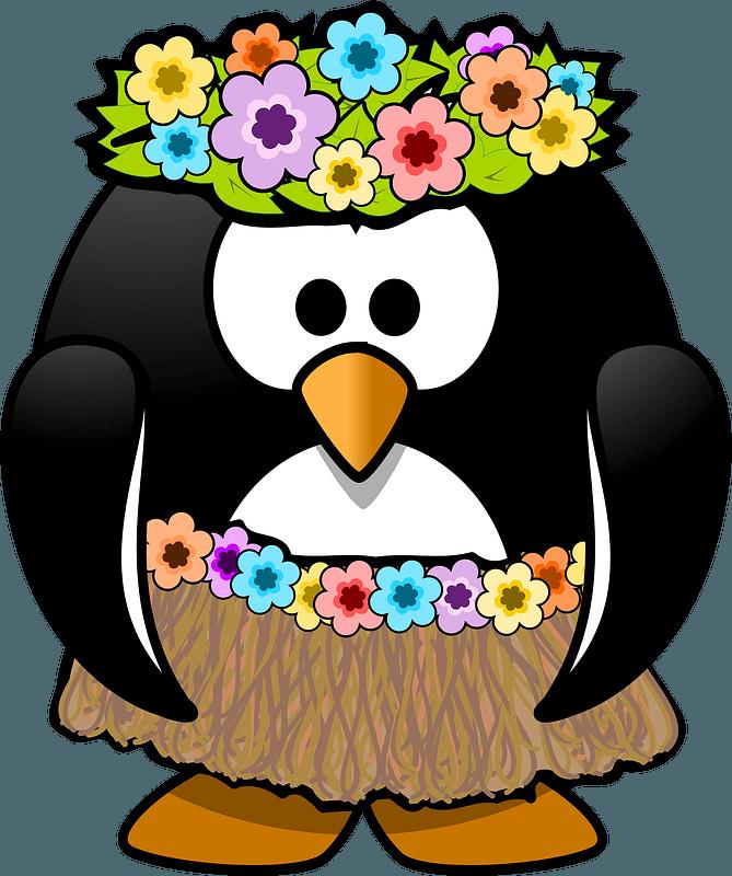Hula Dancer Penguin Clipart Free Download Transparent Png Creazilla