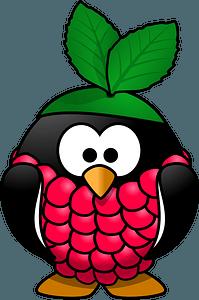 Raspberry penguin clipart
