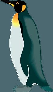 Penguin 클립 아트