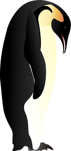 Penguin looking down clipart