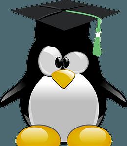 Penguin graduate clipart