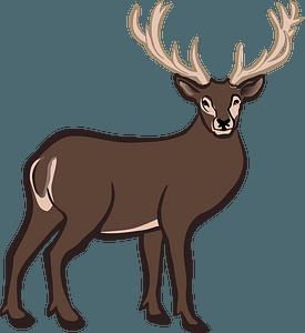 Deer 클립 아트