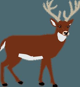 Male deer 클립 아트