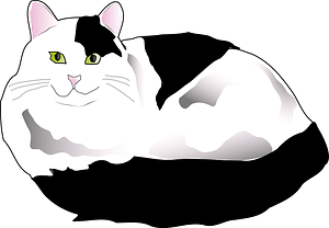 Black and white fluffy cat clipart