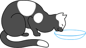 Spotted cat drinking clipart