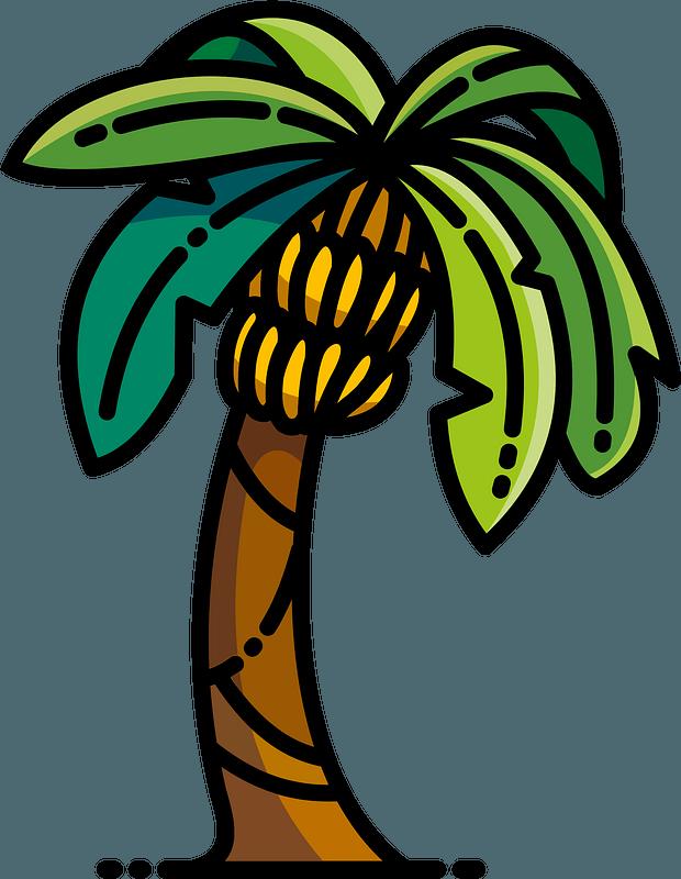 Banana tree clipart