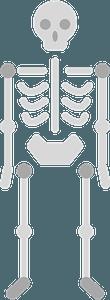 Skeleton immagine clipart
