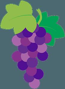 Vine clipart