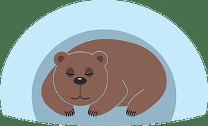 Bear den clipart