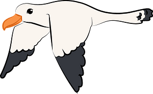 Flying seagull clipart