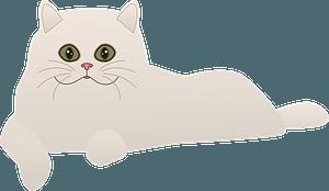 White cat clipart