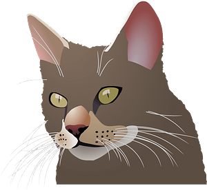 Cat head 클립 아트