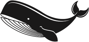 Black Whale clipart