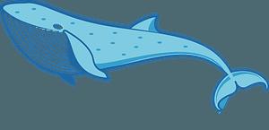 Blue Whale clipart