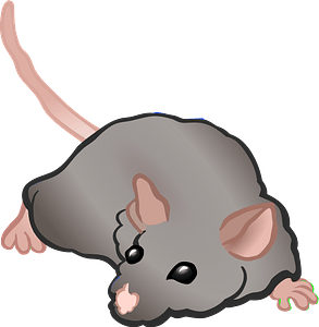 Lying mouse clipart