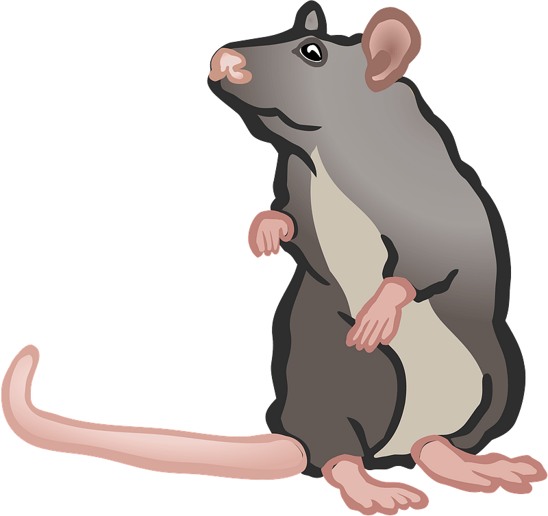 Brown Mouse Clipart Free PNG Image Illustoon