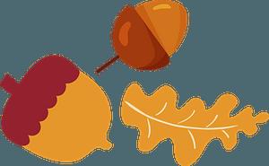 Acorns and oak leaf clipart