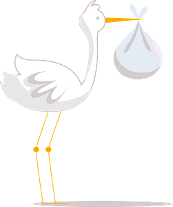 Crane with a baby clipart