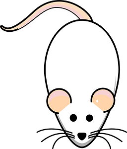 Cartoon white mouse clipart