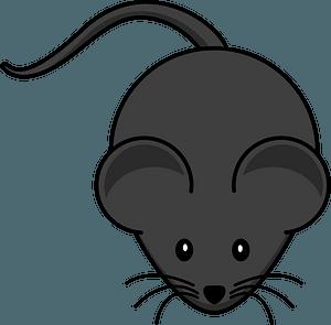 Cartoon grey mouse clipart