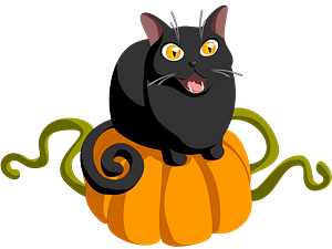 Black cat on a pumpkin clipart