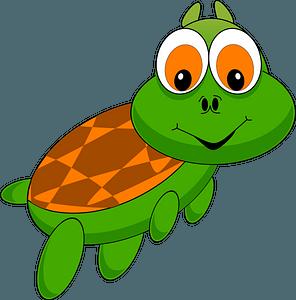 Cartoon little turtle clipart