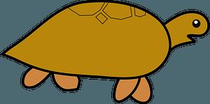 Cartoon brown turtle clipart