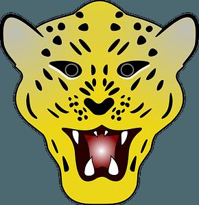Leopard head кліпарт