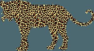 Textured leopard clipart
